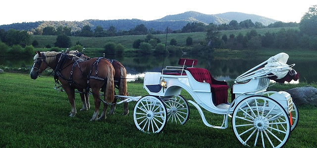 Horse Drawn Carriage available for your special day