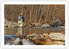 The finest fishing in Piedmont Virginia
